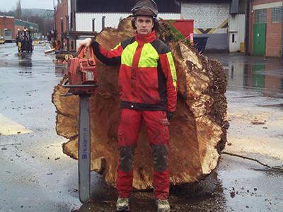 Baumfallung Siegen Uto Bunzel Problembaume Fallen Baumpflege